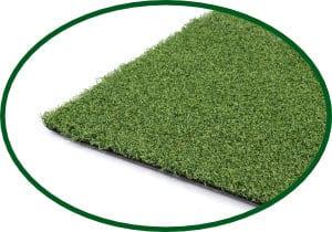 Grasses Template